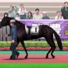 【ダビマス】主戦馬の併せ効果一覧