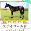 【ダビマス】星5の種牡馬ステイゴールドのステータス
