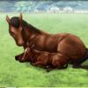 【ダビマス】スピードAの自家製繫殖牝馬から強い産駒は生まれるかな