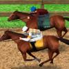 【ダビマス】能力の高い自家製繁殖牝馬なら星4種牡馬のアウトブリードでも強い馬出るな