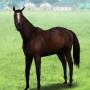 【ダビマス】アルバトール×ロージズインメイに自家製種牡馬で完璧な配合してみた